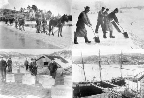 Images of the ice harvest in Norway