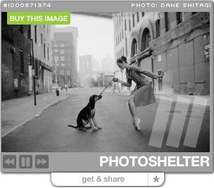 Photoshelter widget