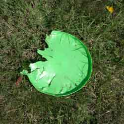 Three-quarters of a frisbee