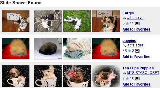 Slide results on a search for puppies