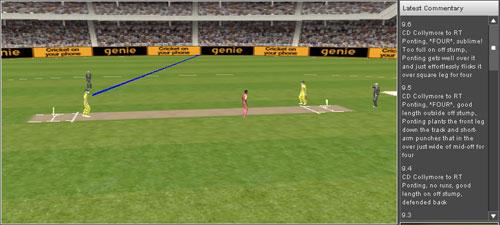 20070405_cricket-sim-4.jpg