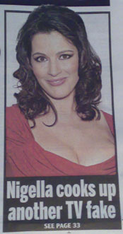 Nigella Lawson in the Daily Mail