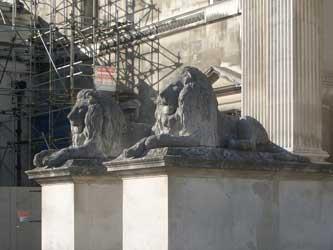 The stone lions at Fitzwilliam Museum, Cambridge