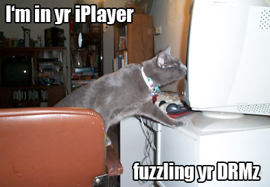 fuzzling_yr_drmz.jpg