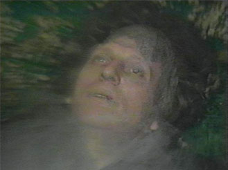 tom_regeneration.jpg