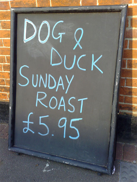 Roast Dog and Duck