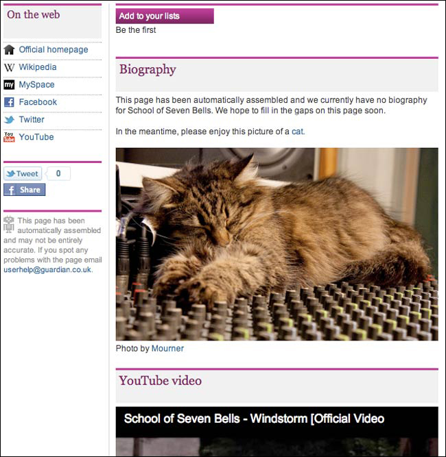 Guardian Error Cat