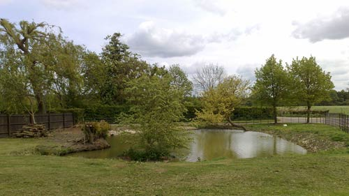 A pond at Wimpole Home Farm
