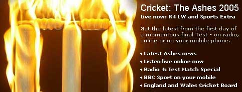 BBC Homepage Ashes promo